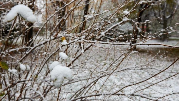 Po prvom snehu príde ďalší, meteorológovia však predpovedajú aj oteplenie