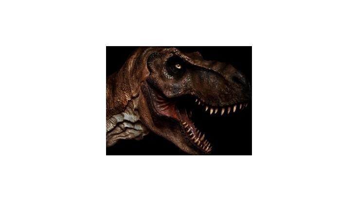 Najkurióznejšie správy roka: Dinosaurí podnikateľ či biliardový účet
