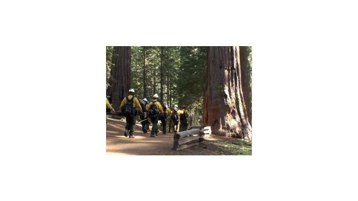 Požiar v Yosemitskom národnom parku ohrozuje gigantické sekvoje