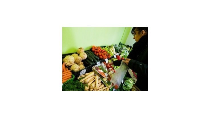 Ceny zeleniny medziročne poklesli o 20 až 45 percent