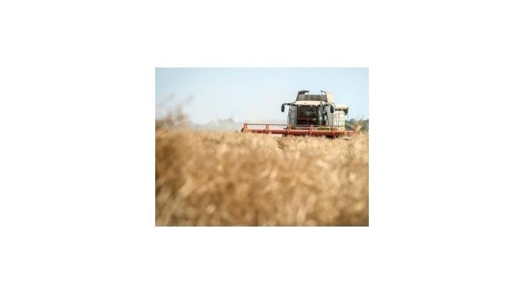 Poľnohospodárov naďalej trápi veľký pokles nákupných cien agrokomodít