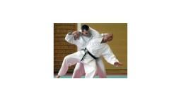 V Bratislave sa predstavila špička slovenského karate