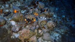 Eldorádo pre archeológov: Pri skupinke ostrovov leží 22 antických vrakov