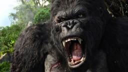O skutočnom King Kongovi veľa nevieme, vyhynul však nedávno