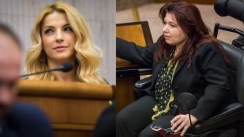 Poslankyňa na vozíčku parlament zvláda, Šimkovičovej prekážal vzduch