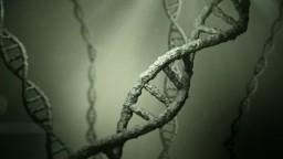 Slovenskí vedci objavili látku, ktorá opravuje poškodenú DNA