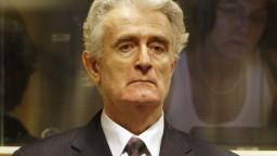 Karadžič sa odvolal voči 40-ročnému trestu, súd vraj pochybil