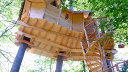 V Bratislave vybudovali nezvyčajný dom rovno v korunách stromov