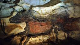 Vo Francúzsku otvorili repliku slávnej jaskyne Lascaux