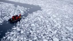 Pod ľadom Antarktídy je úžasný svet, poslali tam robota s kamerou