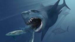 Zistili, prečo vyhynul najhroznejší morský predátor všetkých čias