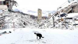 Talianske Amatrice opäť čelilo zemetraseniu, zrútila sa časť kostola