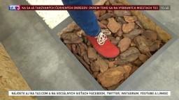 Barefoot alebo bosá noha. Novinka v obuvníckom priemysle