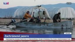 Zachránené jazero/ Návrat tuleňov