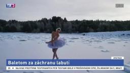 Baletom za záchranu labutí/ Mrazivé umenie pod vodou