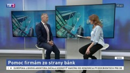 Pomoc firmám zo strany bánk