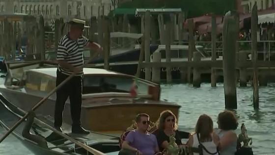 Vstup do Benátok nebude zadarmo/ Bocian s protézou sa učí chodiť
