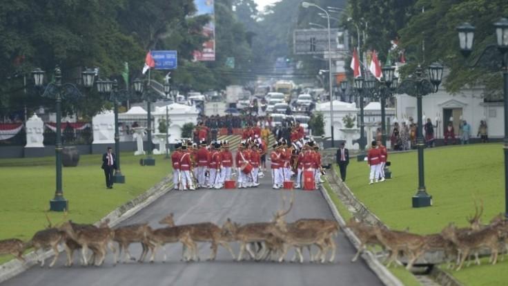 indonesia-saudi-79442-8600c685c4114c24a42fe2105076d3b0_0a000002-b92d-0707.jpg