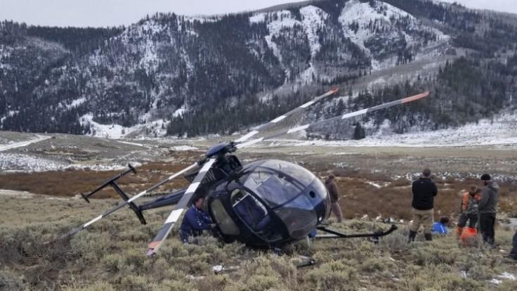 elk-crashes-helicopter-27229-515c731947d748999263c392759c6a92_7f000001-e3fa-5b70.jpg