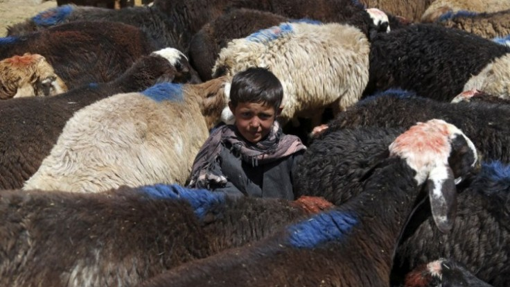 afghanistan-eid-al-adha-38610-244f29530735441d933a96d66449905a_7f000001-b78a-aeda.jpg