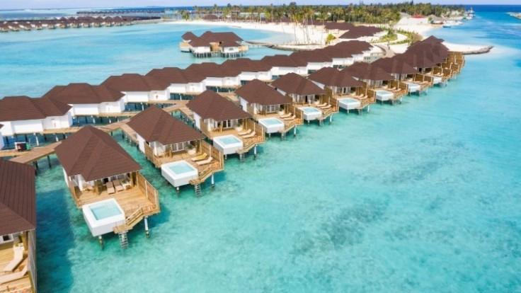 maldivy_0a14036f-0af1-91f0.jpg