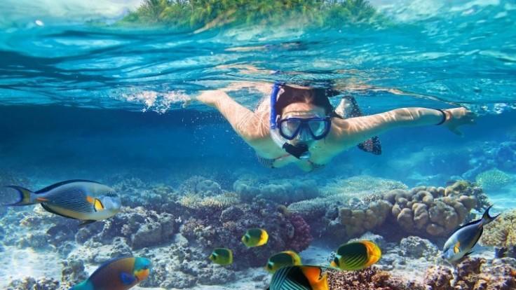 snorkeling-depositphotos-17822859-original_0a140370-fa35-1b2e.jpg