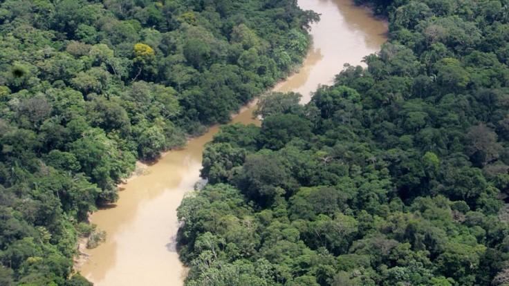Letecký pohľad na ekvádorský národný park Yasuni v Amazonskom pralese, ktorý sa tiež otvoril ťažbe ropy.