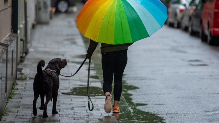 Prechádzka so psom.